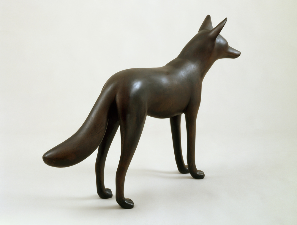 Coyote VIII