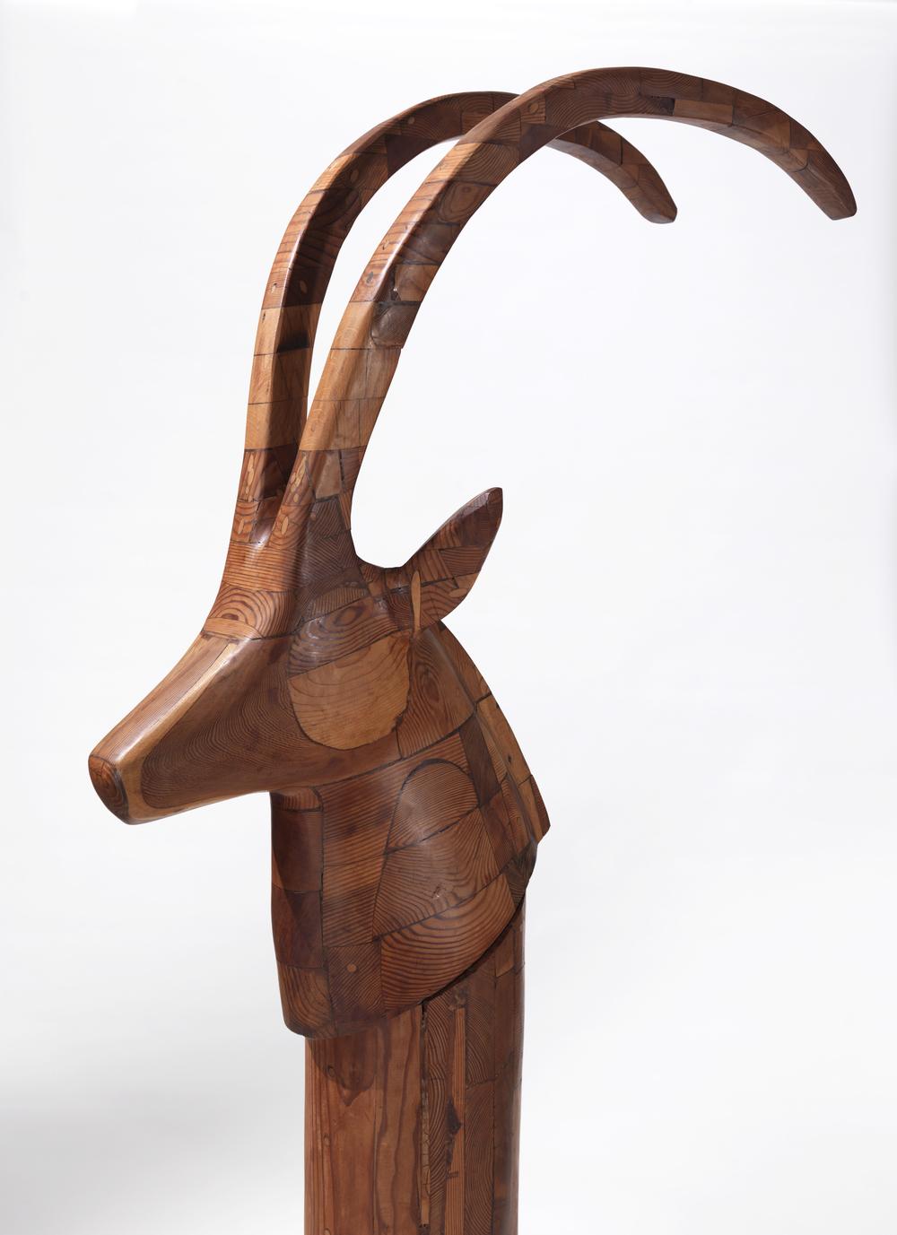 Black Sable Antelope (Detail)