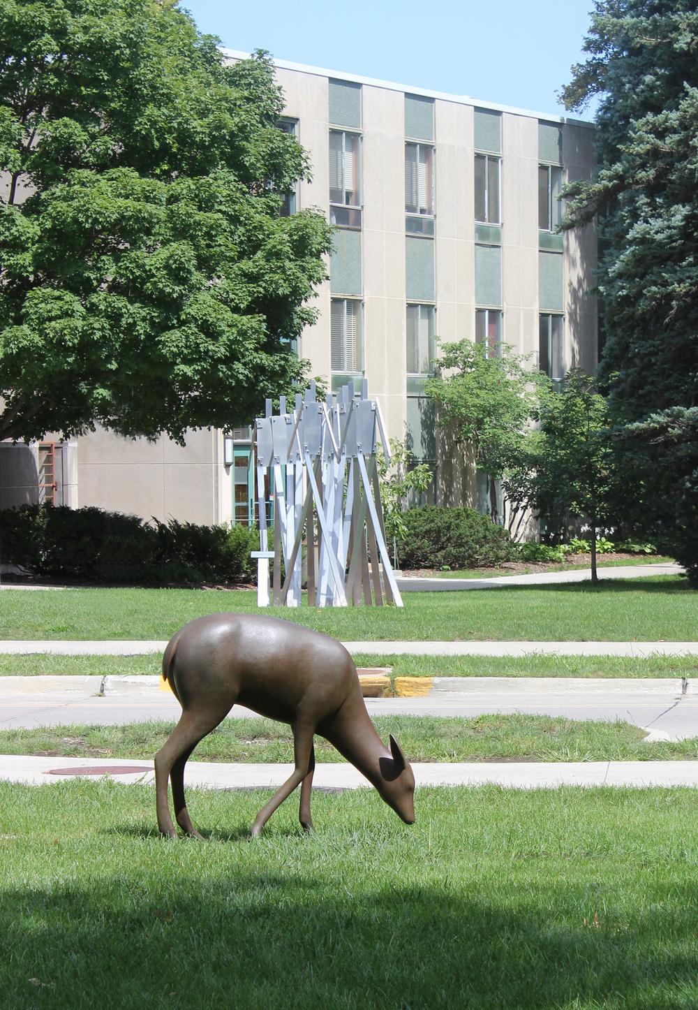 Deer 7_ISU_6992_Web_sm.jpg