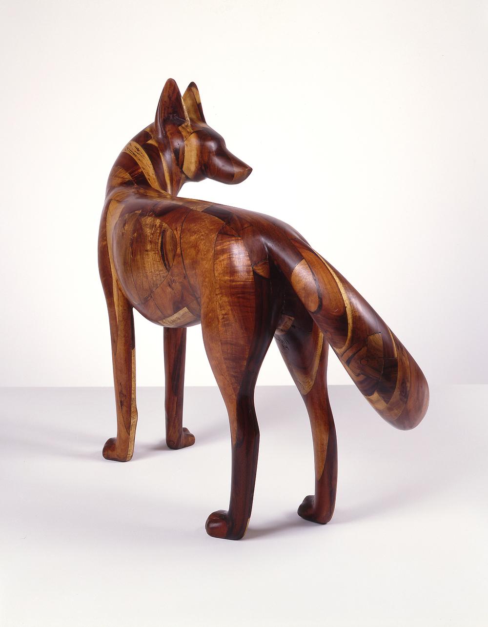 Coyote III