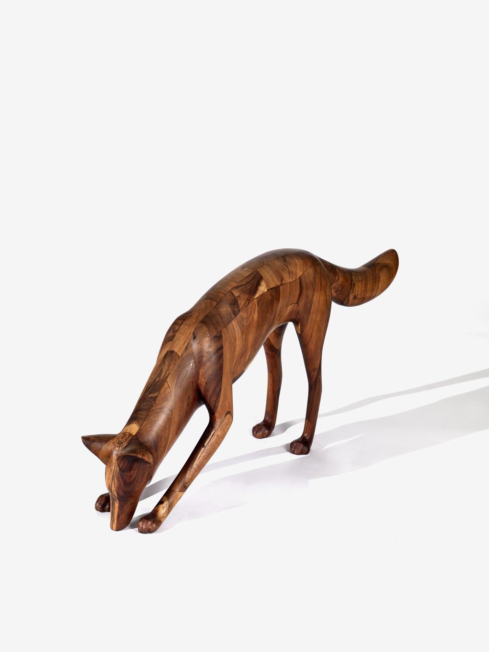 Coyote IV