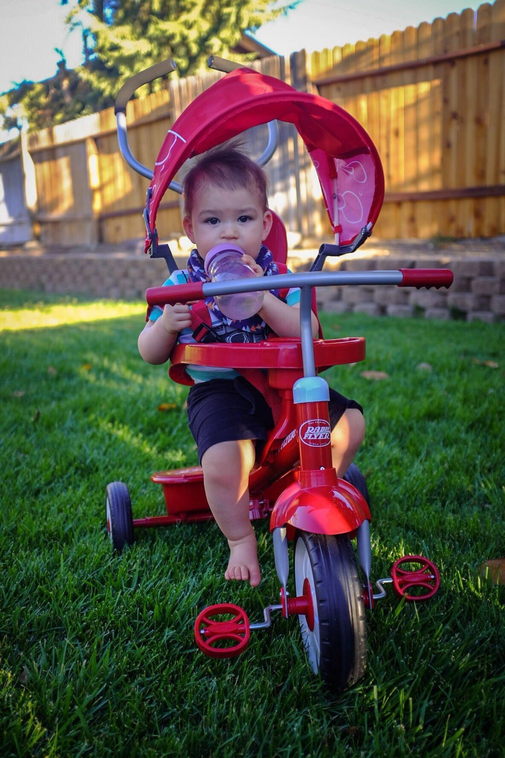 Dad spoiled Blake with a new trike.