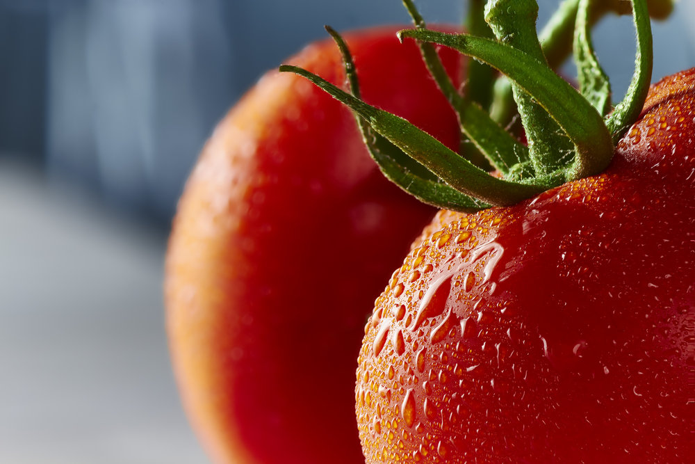 tomato_final_RT_web.jpg