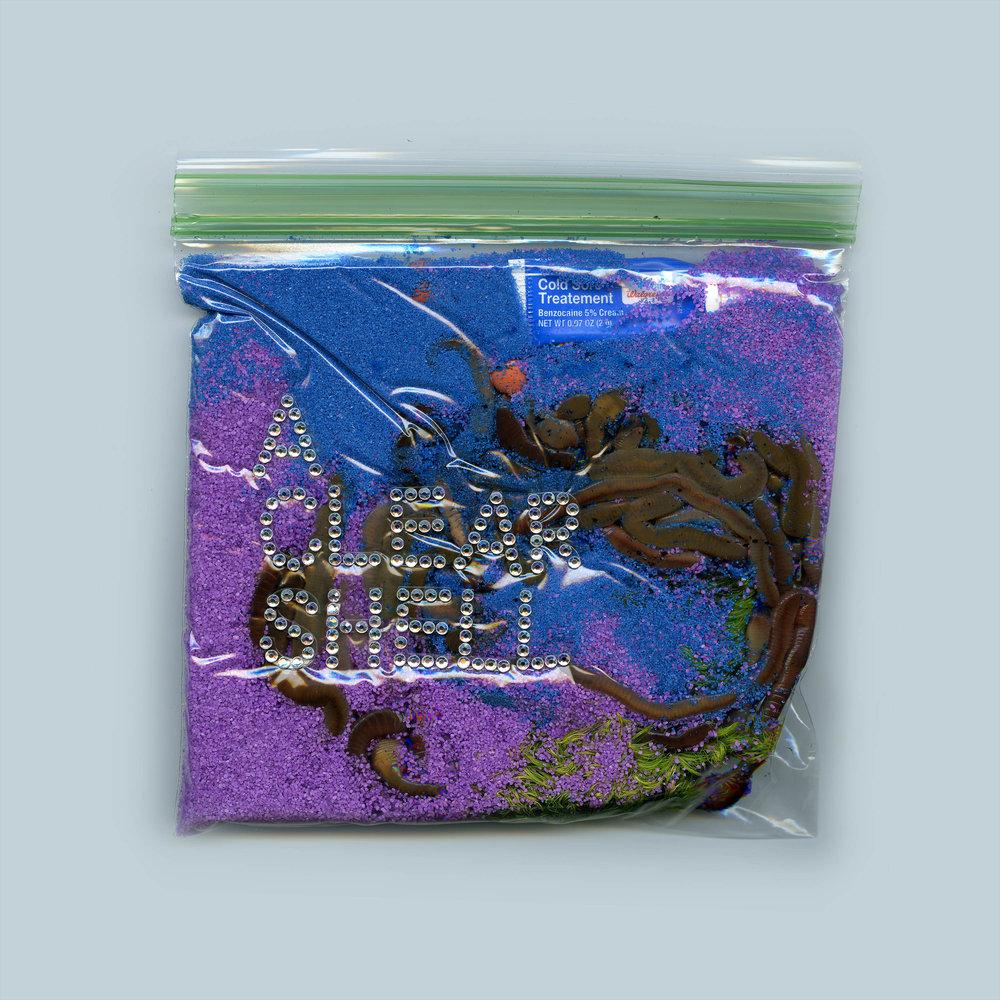 Worm Bag D