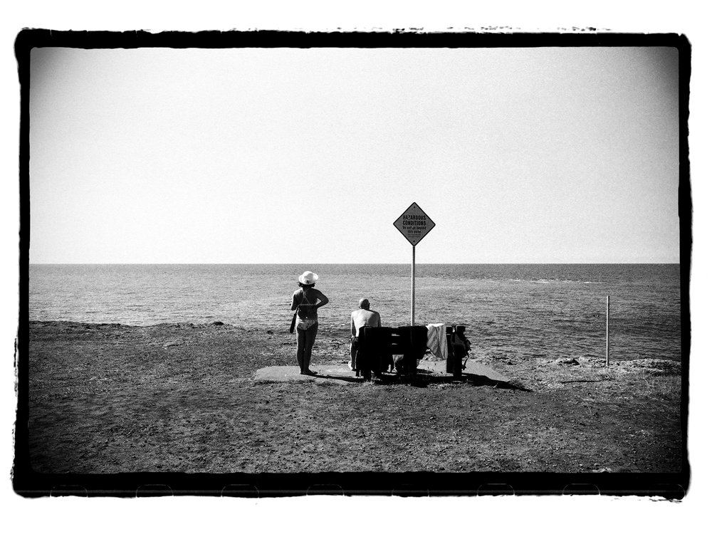 film-whalewatching-border-blog.jpg