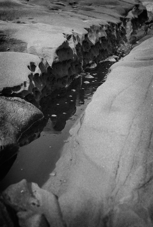 La Jolla Tidepools
