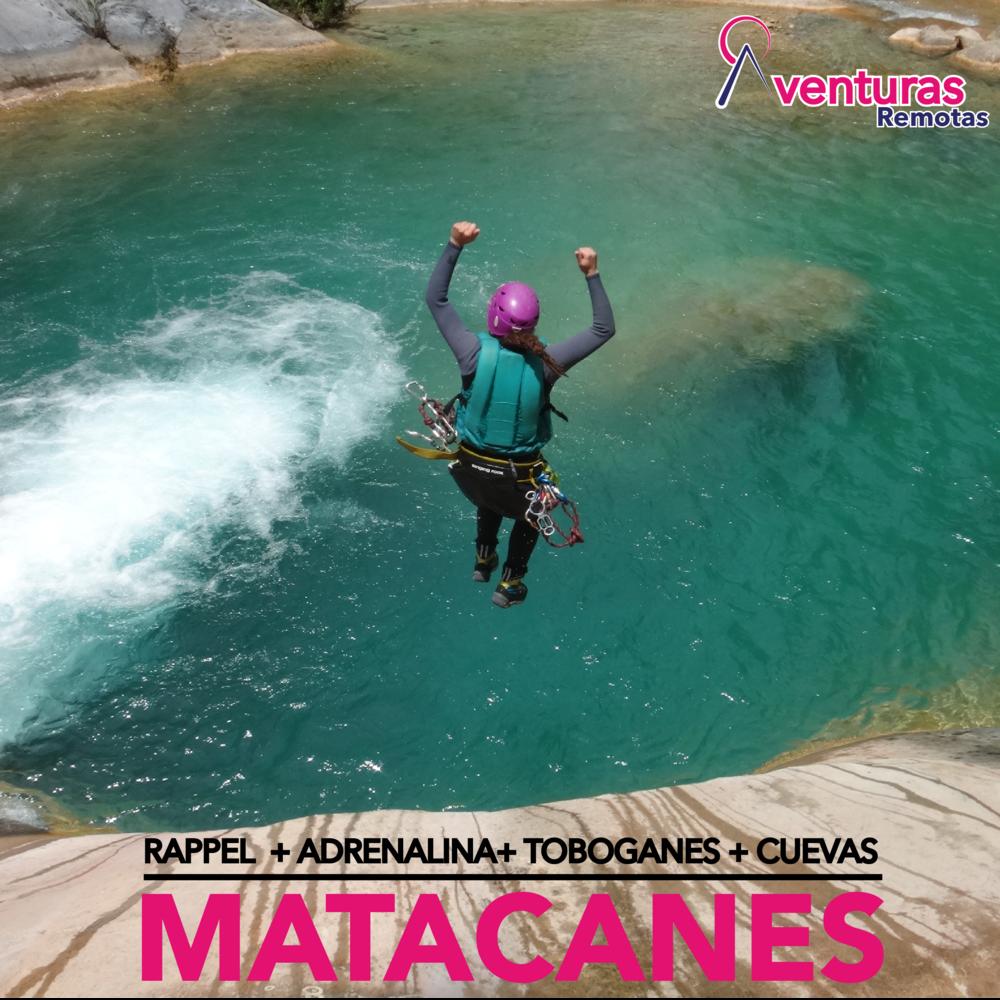 MatacanesQuickLink-01.png