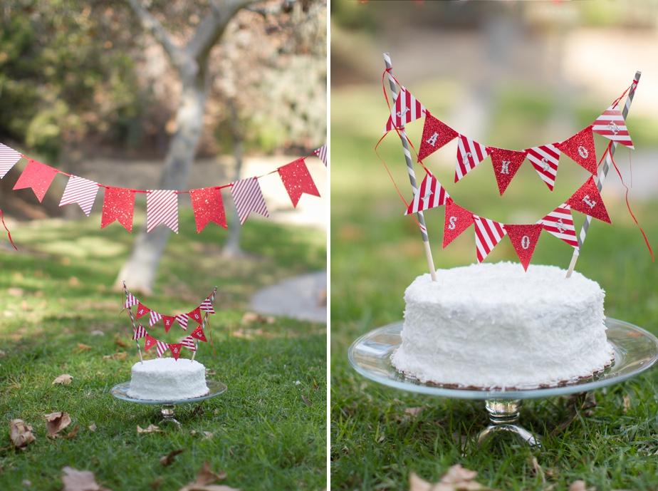 Smash-the-Cake_0003