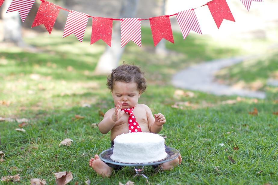 Smash-the-Cake_0004