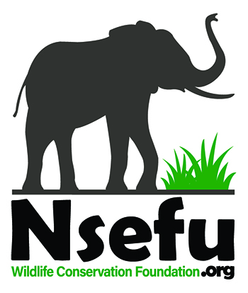 We support Nsefu Wildlife as a partner in conservation.
