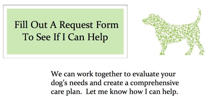 dog herbalist.jpg