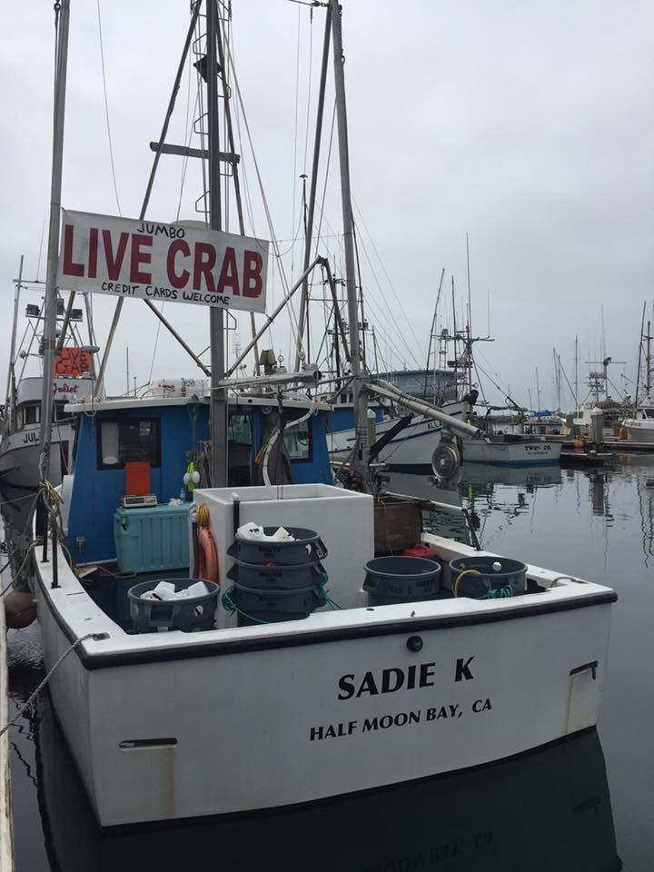 Sadie K Head on down to Dock G9 and find the Sadie K with Black Cod, Salmon Crab and occasionally Tuna!  Call Jake (415)245-2734 or email sadiekfish@gmail.com to pre-order.