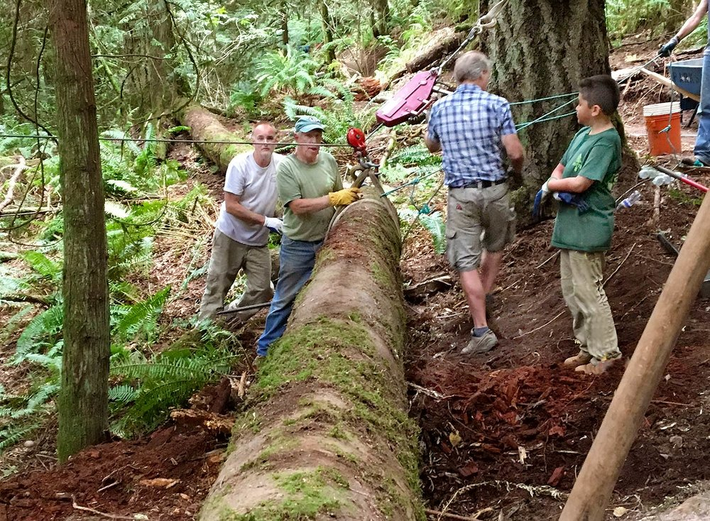 Volunteers (led by Jerry Granahan) are shown placing a log barrier along the side of a newly completed trail, called Rooty.  Why a log barrier?  To help stop short-cutting on the trails at Little Mountain Park.