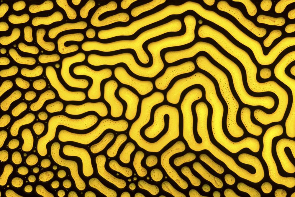 Ferrofluid 10
