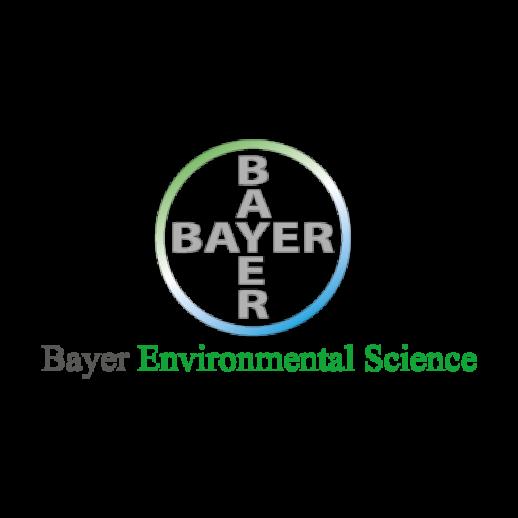 Bayer ES