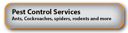 Pest Control South Burnett
