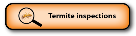 Termite inspections South Burnett