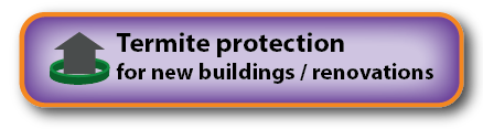 Pre-construction termite treatments