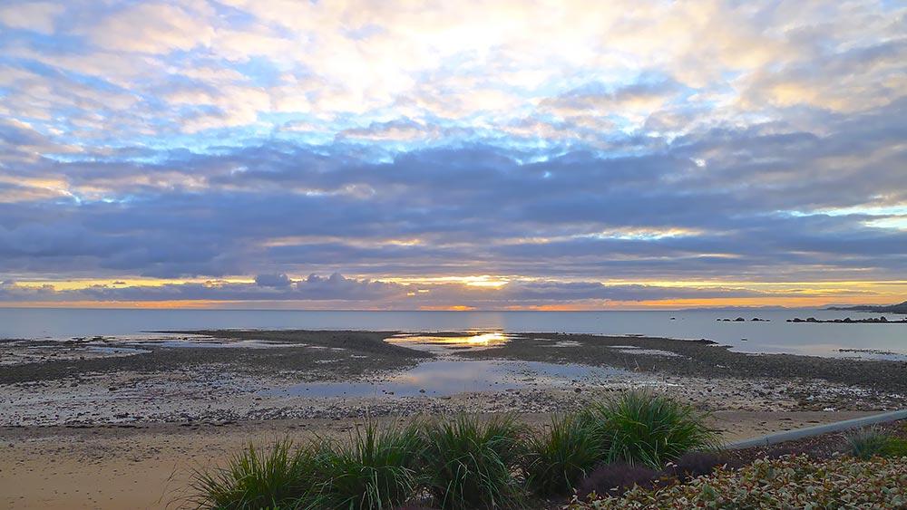 sunrise-at-penguin.jpg