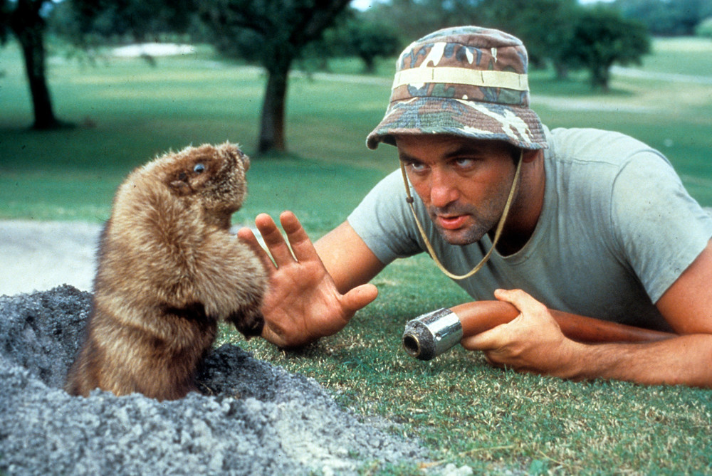 Bill Murray caddyshack