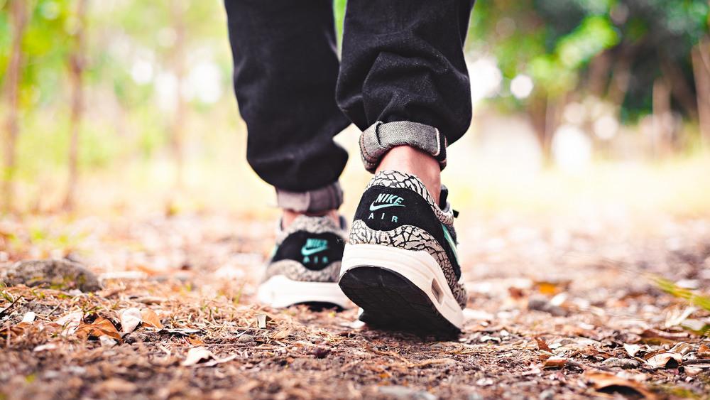 airmax atmos sneakers