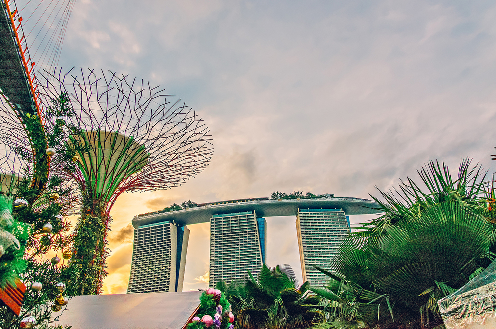 Singapore Gardens by the Bay Vacation