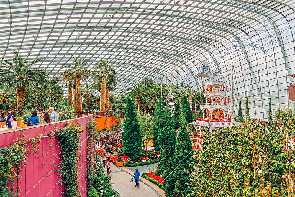 Gardens by the Bay Flower Dome Singapore Photography