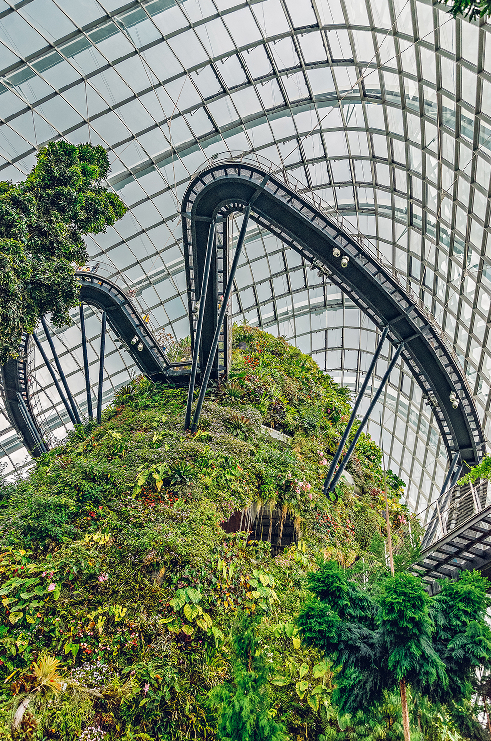 Singapore Gardens by the Bay Cloud Forest Photography Vacation