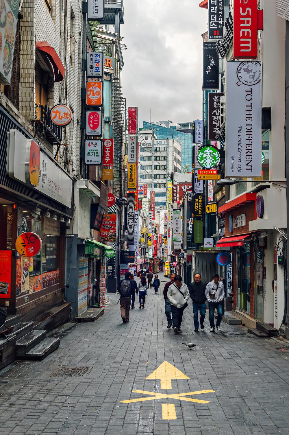 Yeouido Park 여의도공원 Seoul South Korea Travel Photography 2016
