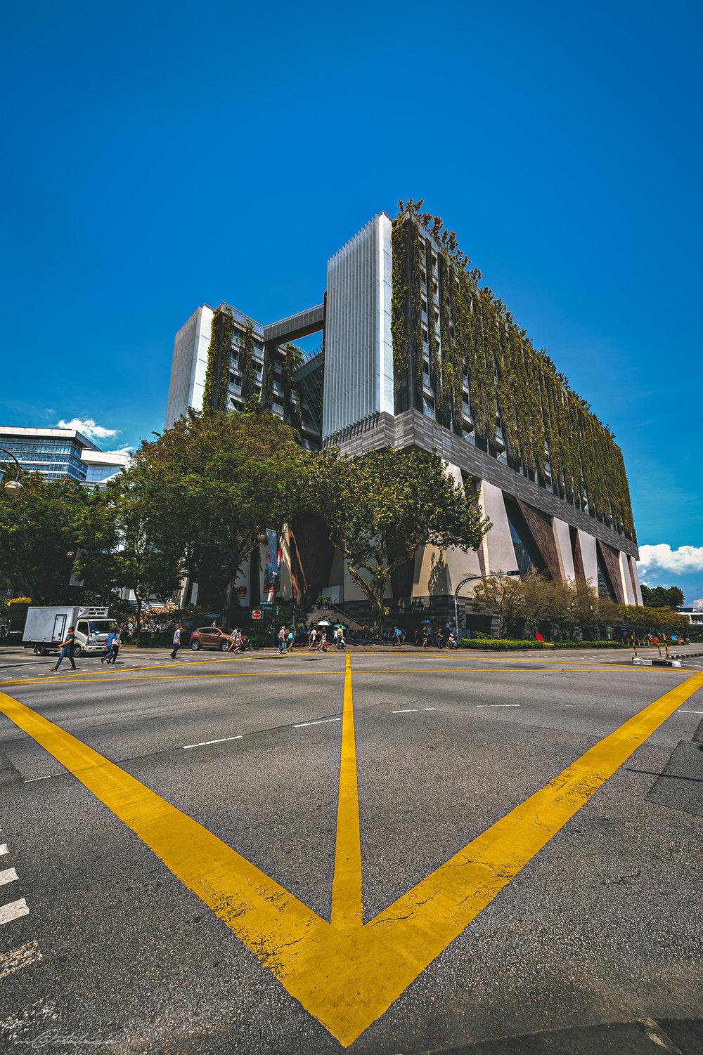 singapore-december-01.jpg