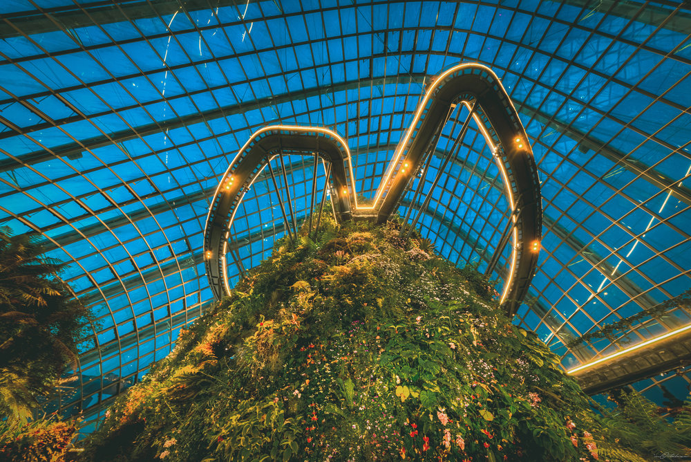 Cloud Forest 2017 Gardens by the Bay Singapore