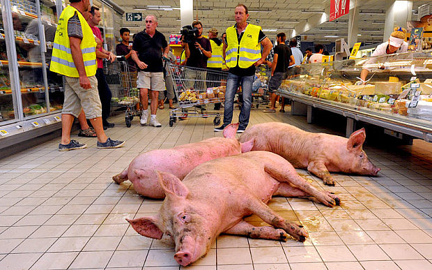 French farmers release big fuck-off pigs into a supermarket