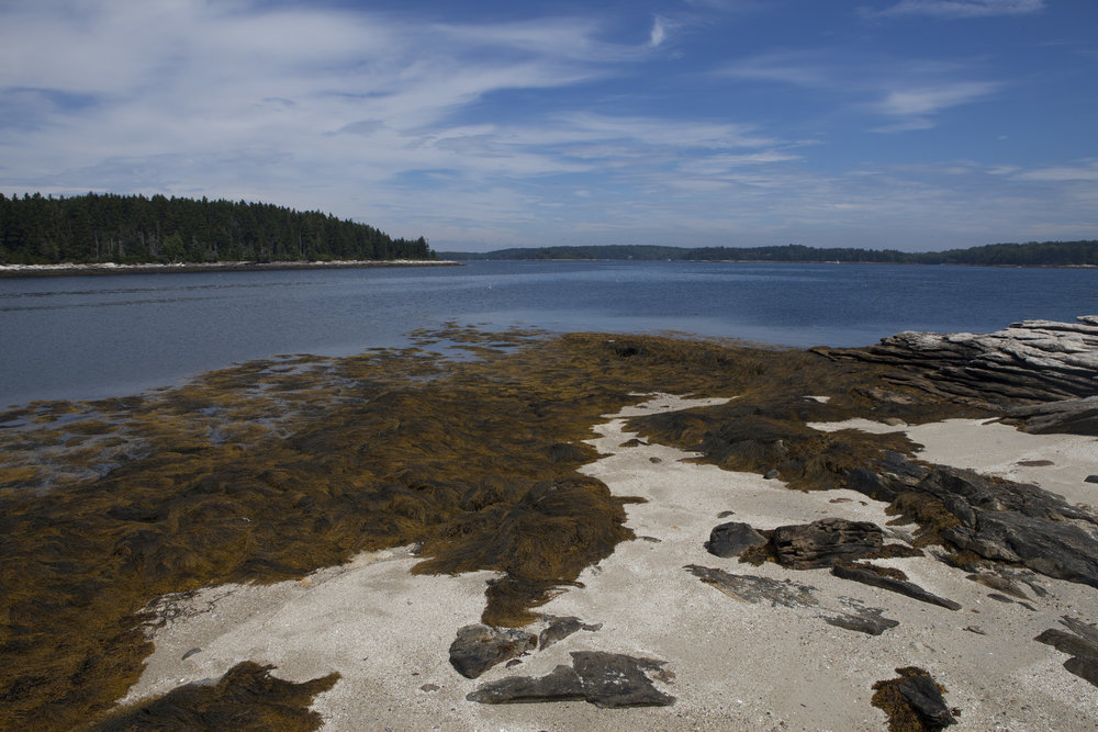 IslandDay03.jpg