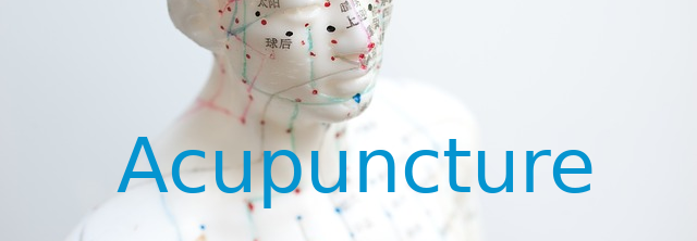 acupuncture - on model- text.png