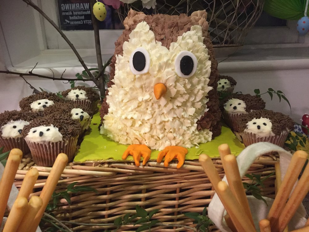 Owl cake face on.JPG