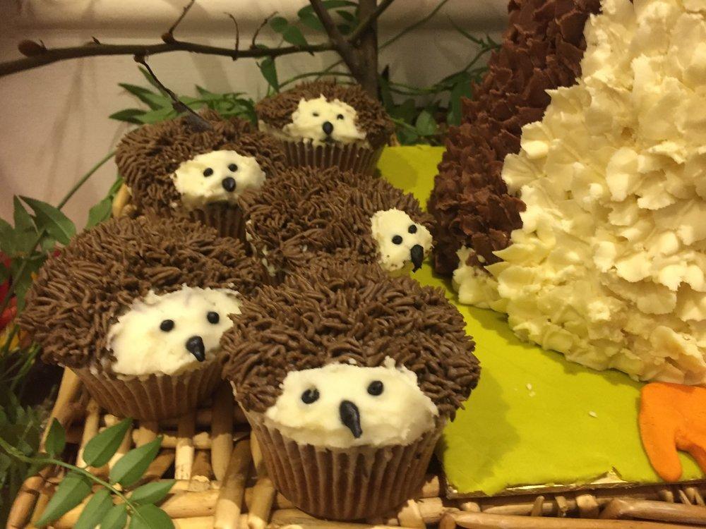 Hedgehog cupcakes.JPG