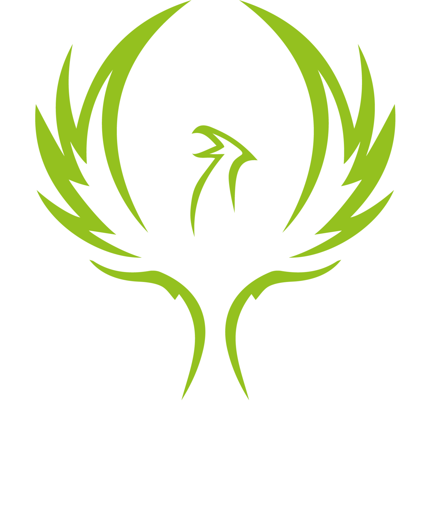 Limitless Golf Performance