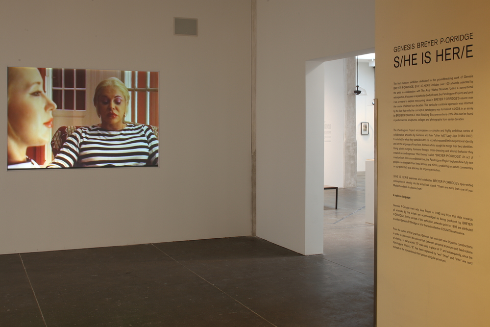 Genesis Breyer P-Orridge - S-HE IS HER-E at AWM, 2013 0004.JPG