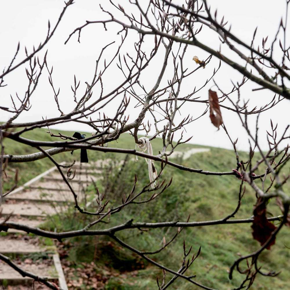 Avebury-Ribbon-Tree-2web.jpg