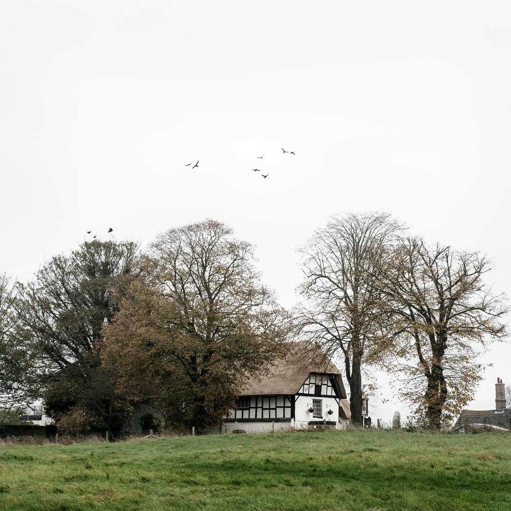 Avebury-Crows-1web.jpg