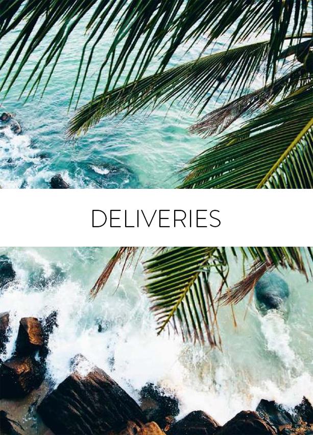 Deliveries policy Maria Malo