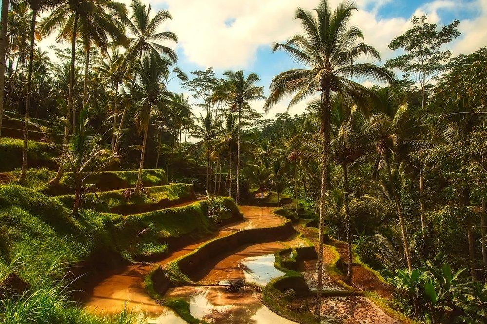 La Isla de los Tesoros. Bali, Indonesia