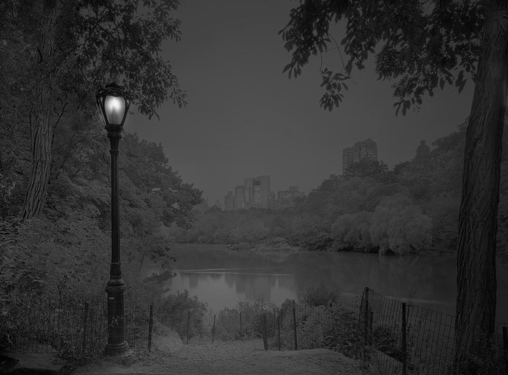Pre-dawn-The Rambles-2012
