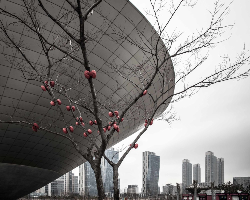 Songdo International Business District  (9).jpg