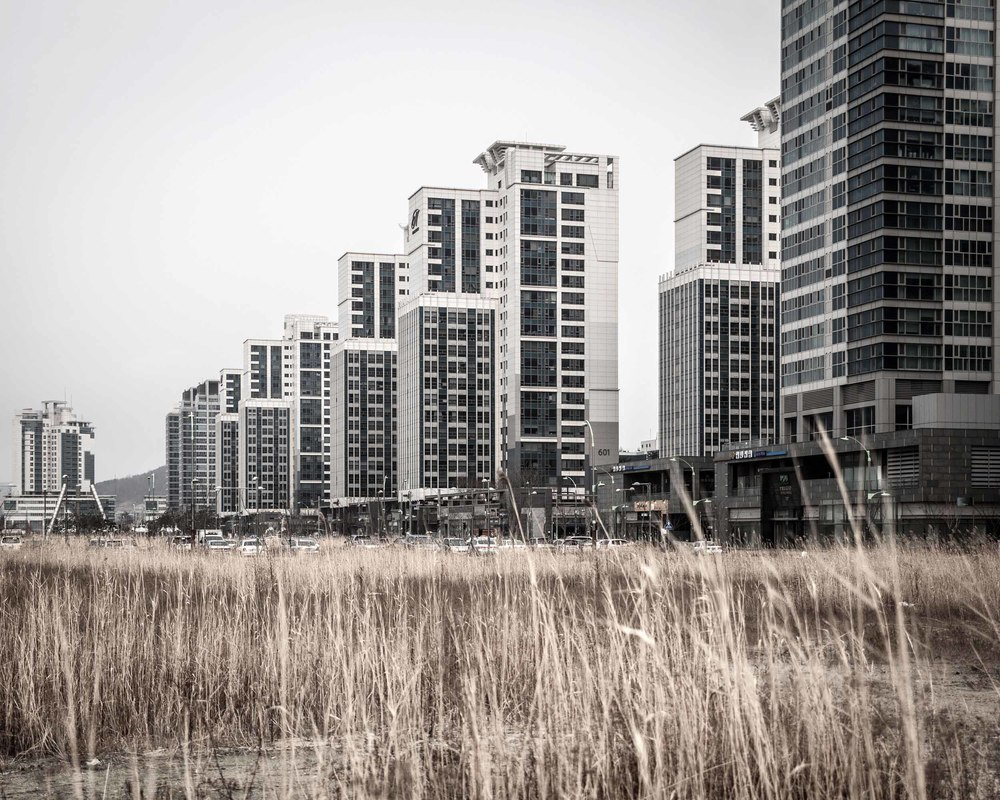 Songdo International Business District  (36).jpg