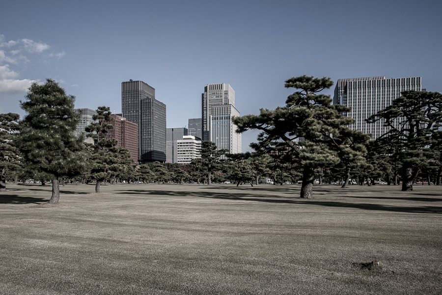 Tokyo (8).jpg