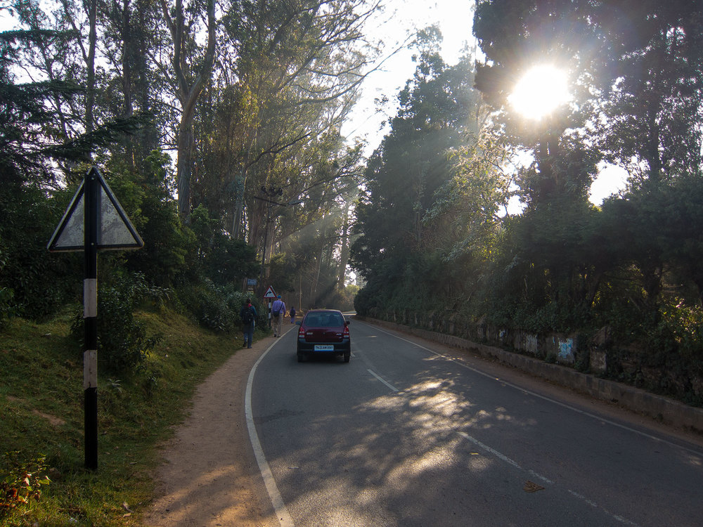 The road down the hill to the Ooty train station from our hotel.