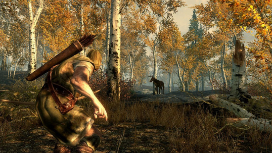 Elder Scrolls Skyrim 360 Screenshot
