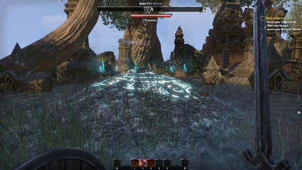 Elder Scrolls Online PC 003