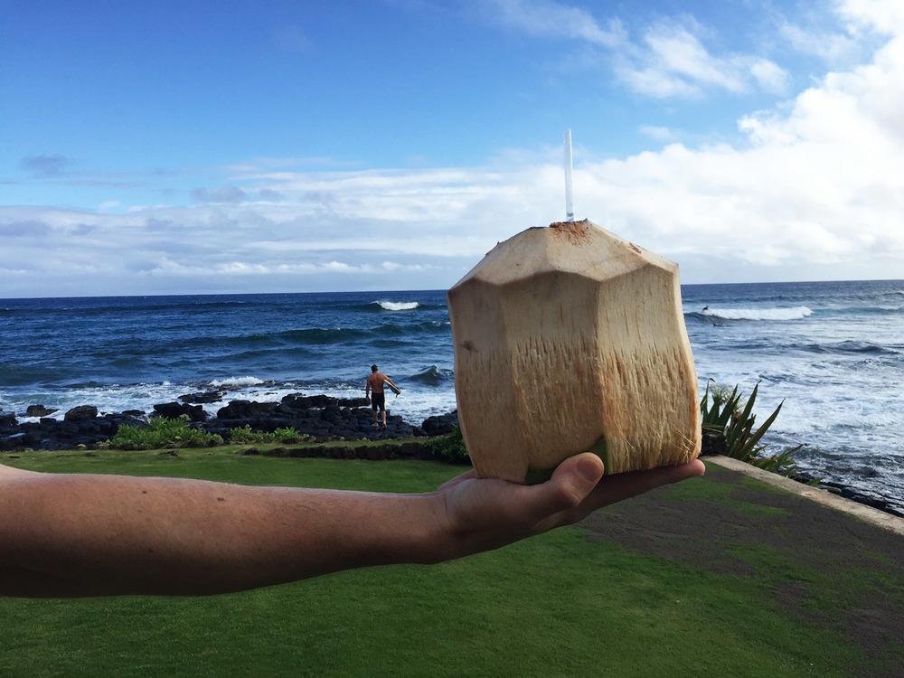 blog_kauai_coconut2.jpg